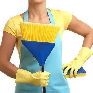 Limpeza, Organização e Conservação